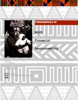 Fundamentals of NGO financial sustainability