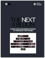 THE NEXT 4 BILLION MARKET SIZE AND BUSINESS STRATEGY AT THE BASE OF THE PYRAMID ppt