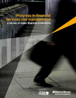 PROGRESS IN FINANCIAL SERVICES RISK MANAGEMENT: A SURVEY OF MAJOR FINANCIAL INSTITUTIONS pdf
