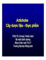 Artichoke Cây dược liệu - thực phẩm - PGS.TS. Dương Thanh Liêm docx