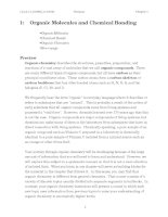 Organic Molecules and Chemical Bonding pdf