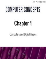 Computers and Digital Basics pot