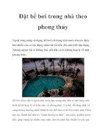 Đặt bể bơi trong nhà theo phong thủy pot