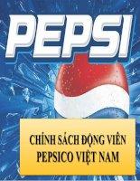 Chính sách động viên tại Pepsico Vietnam pdf