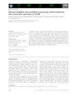 Báo cáo khoa học: Recent insights into cerebral cavernous malformations: the molecular genetics of CCM pot