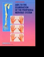 Aids to the Examination of the Peripheral Nervous System, 5 docx