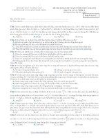 Đề thi thử đại học môn Vật lý - TRƯỜNG THPT CHUYÊN VĨNH PHÚC năm 2013 ppt