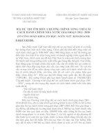 BÀI DỰ THI TÌM HIỂU CHƯƠNG TRÌNH TỔNG THỂ CẢI CÁCH HÀNH CHÍNH NHÀ NƯỚC GIAI ĐOẠN 2011- 2020 pptx