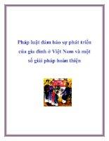 Pháp luật đảm bảo sự phát triển của gia đình ở Việt Nam và một số giải pháp hoàn thiện potx