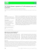 Báo cáo khoa học: Tec family kinases: regulation of FceRI-mediated mast-cell activation ppt