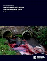 Environment and Heritage Service Water Pollution Incidents and Enforcement 2004 doc