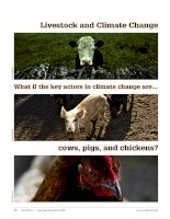 Livestock and Climate Change What if the key actors in climate change are…cows, pigs, and chickens? docx