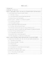 Đề tài: Phân tích hoạt động kinh doanh của công ty cổ phần thang máy Hoa Hoa pptx