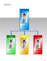 biểu đồ tổ chức dạng thẻ, card chart