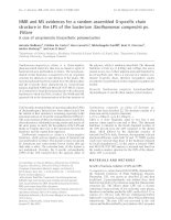 Báo cáo khoa học: NMR and MS evidences for a random assembled O-specific chain structure in the LPS of the bacterium Xanthomonas campestris pv. Vitians A case of unsystematic biosynthetic polymerization potx