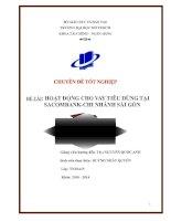 Hoạt động cho vay tiêu dùng tại Ngân hàng thương mại cổ phần Sài Gòn Thương Tín (Sacombank) – Chi nhánh Sài Gòn