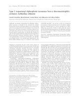 Báo cáo khóa học: Type 2 isopentenyl diphosphate isomerase from a thermoacidophilic archaeon Sulfolobus shibatae potx