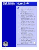 Carer's Credit Application form pot
