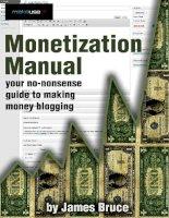 Monetization Manual: Your No - Nonsense Guide to Making Money Blogging