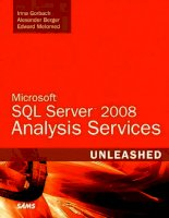 Microsoft SQL Server 2008 Analysis Services Unleashed ppt