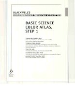 Blackwell''''s Underground Clinical Vignettes Clinical Science Color Atlas, Step 1 pot