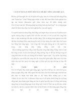 CÁCH SỬ DỤNG 45 PHÚT MỖI NGÀY ĐỂ HỌC TIẾNG ANH HIỆU pdf