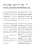 Báo cáo Y học: Soluble guanylate cyclase is allosterically inhibited by direct interaction with 2-substituted adenine nucleotides doc