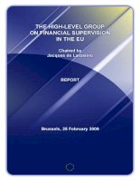 THE HIGH-LEVEL GROUP ON FINANCIAL SUPERVISION IN THE EU pot