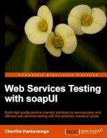 Web Services Testing with soapUI pptx