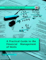 Fundamentals of NGO Management: A Practical Guide to the Financial Management of NGOs pot