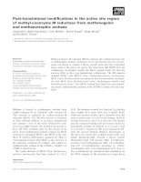 Báo cáo khoa học: Post-translational modifications in the active site region of methyl-coenzyme M reductase from methanogenic and methanotrophic archaea potx