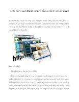 13 lý do vì sao doanh nghiệp cần có một website riêng doc
