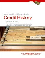 What You Should Know About...Credit History pdf