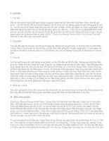 Đọc hiểu Truyện An Dương Vương và Mị Châu – Trọng Thuỷ - văn mẫu