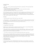 Tìm hiểu tác phẩm Bài ca ngất ngưởng - văn mẫu