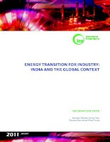 ENERGY TRANSITION FOR INDUSTRY: INDIA AND THE GLOBAL CONTEXT pptx