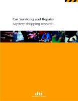 Car Servicing and Repairs Mystery shopping research docx