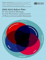 2008-2013 Action Plan for the Global Strategy for the Prevention and Control of Noncommunicable Diseases docx