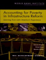 accounting for poverty in infrastructure reform potx