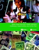 Stolen Asset Recovery (StAR) Initiative: Challenges, Opportunities, and Action Plan pot