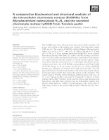 Báo cáo Y học: A comparative biochemical and structural analysis of the intracellular chorismate mutase (Rv0948c) from Mycobacterium tuberculosis H37Rv and the secreted chorismate mutase (y2828) from Yersinia pestis pptx