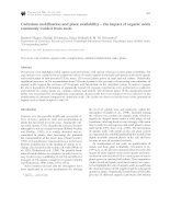 Cadmium mobilisation and plant availability   the impact of organic acids