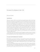 Economic Development in the UAE pptx