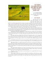 TÁC ĐỘNG CỦA BIẾN ĐỔI KHÍ HẬU ĐẾN AN NINH LƯƠNG THỰC QUỐC GIA potx
