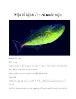 Một số bệnh cho cá nước mặn pptx