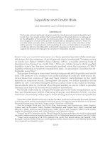 Liquidity and Credit Risk potx