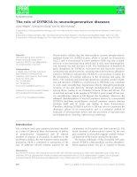 Báo cáo khoa học: The role of DYRK1A in neurodegenerative diseases docx
