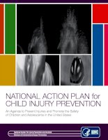 NATIONAL ACTION PLAN for CHILD INJURY PREVENTION: An Agenda to Prevent Injuries and Promote the Safety of Children and Adolescents in the United States pptx