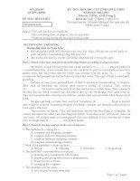 Đề thi HSG lớp 12 năm 2013 môn Tiếng Anh vòng 2 tỉnh Quảng Bình pptx