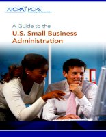 A Guide to the U.S. Small Business Administration pdf